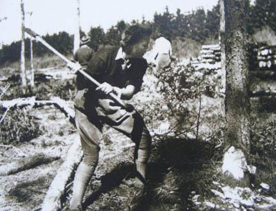 A Timber Jill cutting down a tree