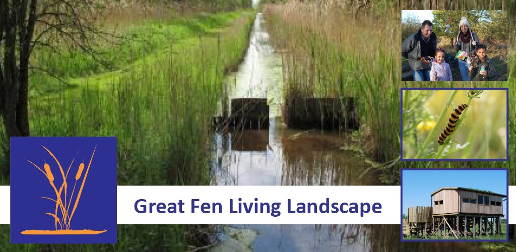 Great Fen Living Landscape