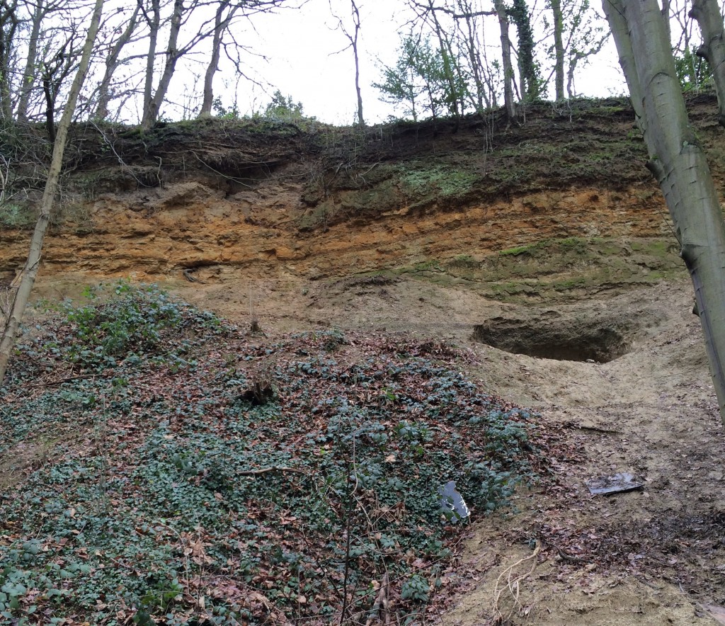 Gilbert's Pit was dug for the Thanet Sands, which was used for moulding ammunition at Woolwich Arsenal