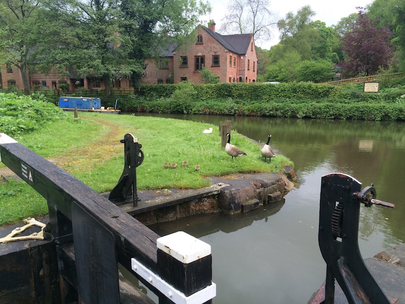 Lock 1 with Foxtwood Cottages in the background